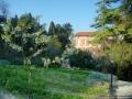 Il giardino e l'orto